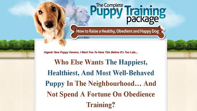 Complete Puppy Training