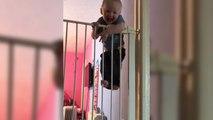 Un bébé escalade une double barrière de sécurité