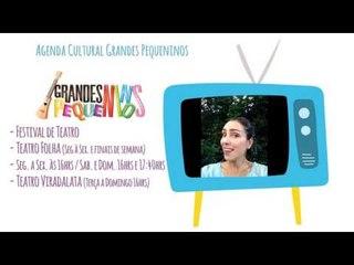 Agenda Cultural SP Final de Semana 09/01/16 - Festival de Teatro