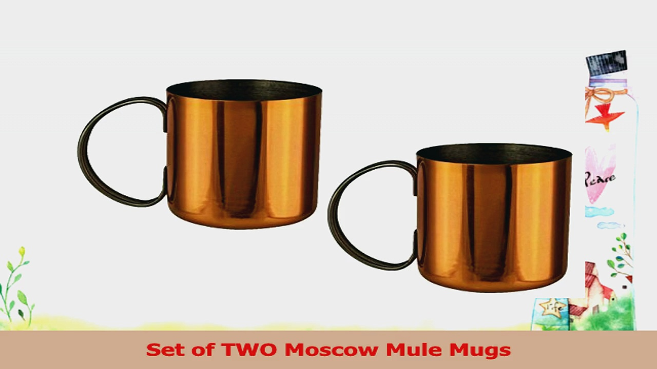 SET of 2 Classic Moscow Mule Copper Coated Cups Mugs Unique Easter Basket Stuffer for Him ab113cca