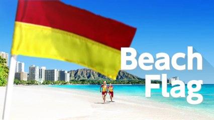 Beach Flag  de 1 2 Switch