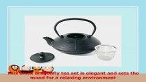 Japanese Antique 24 fl oz Black Dragonfly Cast Iron Teapot Tetsubin with Infuser Tea Set 342a66f4