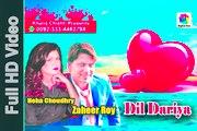 Dil Dariya full hd song by Zaheer roy& Neha Choudhry|digital box|| Presented By Khaliq Chishtim