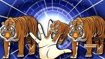 Tiger Cartoon For Children Finger Family Nursery Rhymes | Tiger Cartoons Finger