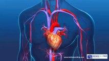 Aortic Valve Replacement Procedure - An Open Heart Surgery!