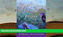 EBOOK ONLINE Like Colour to the Blind: Soul Searching and Soul Finding Donna Williams For Kindle