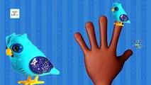 Little Live Pets Talking Owl Kids Toys Finger Family Children Cartoon Animation Nursery Rhymes