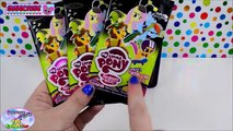 My Little Pony Discord Exclusive Collectors Tin CCG TCG Surprise Egg and Toy Collector SETC