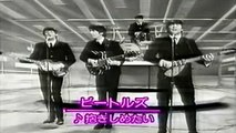 The Beatles - I Want To Hold Your Hand - Performed Live On The Ed Sullivan Show 2/9/64 HQ