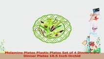 Melamine Plates Plastic Plates Set of 4 Dinnerware Dinner Plates 105 Inch Orchid e12cd6b9