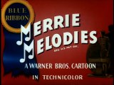 Merrie Melodies - Fin'n'Catty
