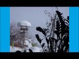 L'Appel au Renouveau - audio de SL-Christ - 10.02.2017