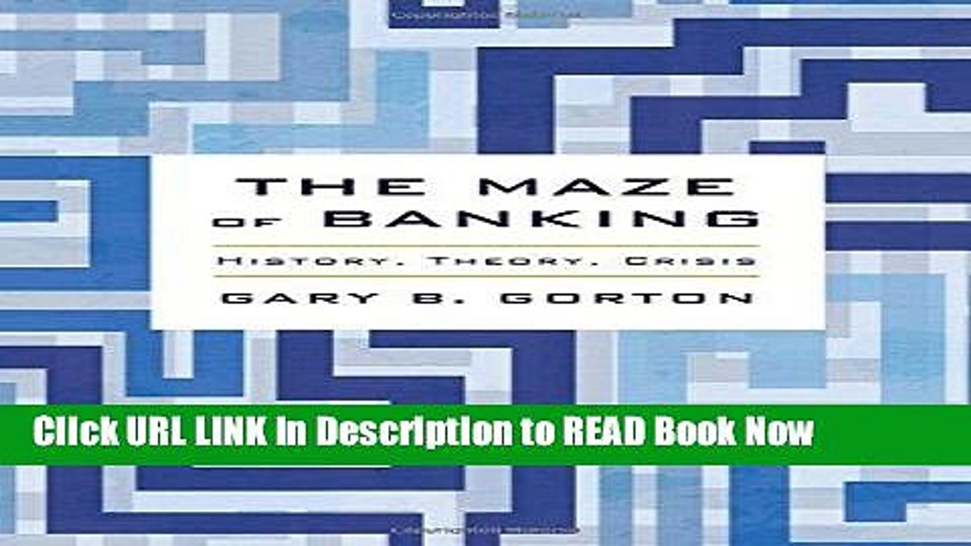 [DOWNLOAD] The Maze of Banking: History, Theory, Crisis Full Online