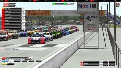 HRF1RT Megane Sebring Race 1&2