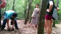 Cuchi tunnel vietnam war history   Vietnam Bonus Vlog