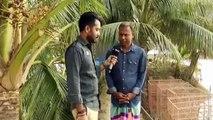 বাংলাদেশে'আধা নিবিড় পদ্ধতিতে চিংড়ি চাষ' করে শত শত চাষী আজ কোটিপতি