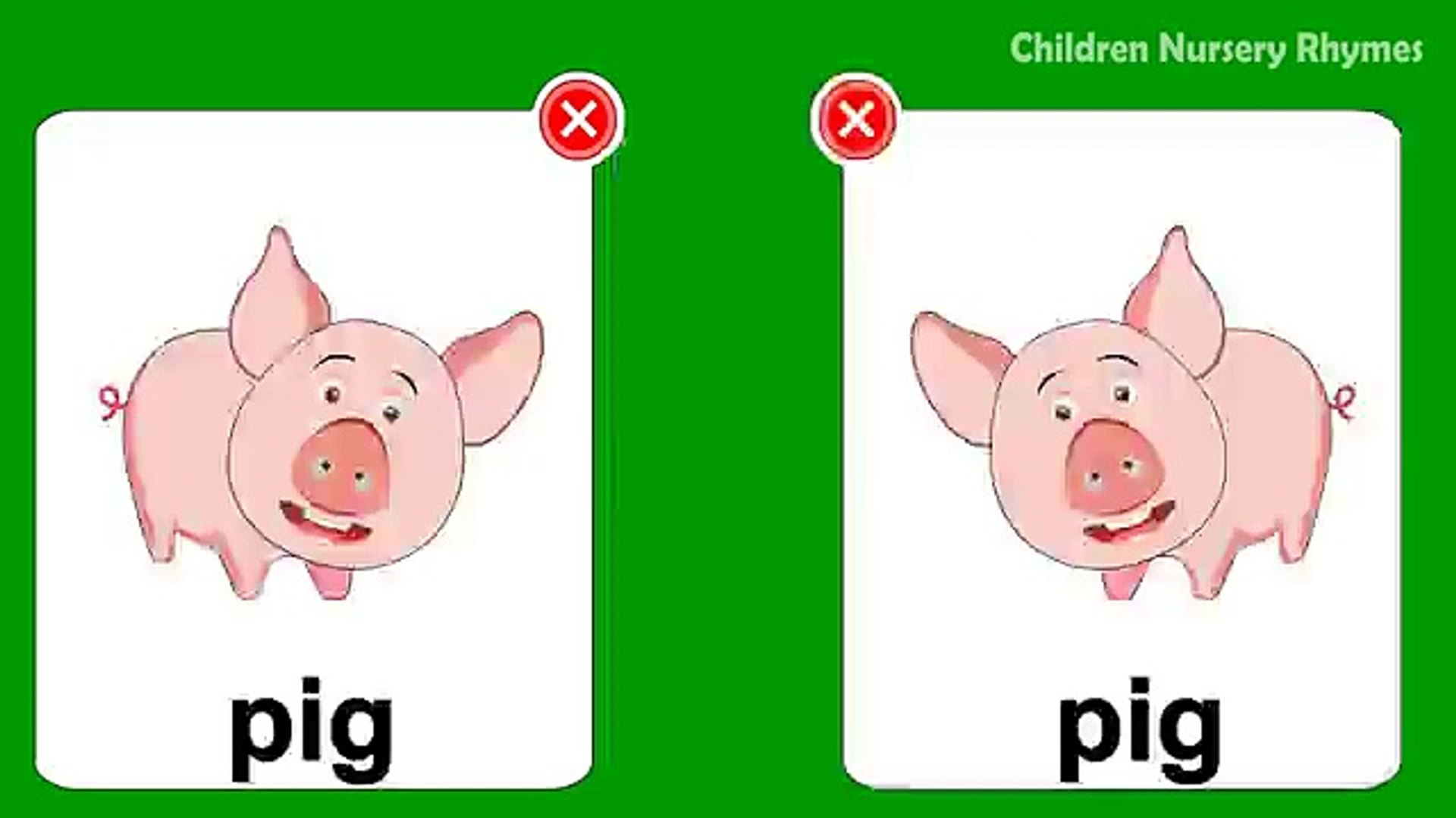 Pet Animals for Children Animals Name with Picture for Kids