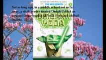 Download The Strange Case of Origami Yoda (Origami Yoda Series #1) ebook PDF