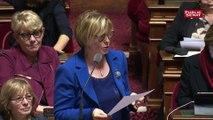 Délit d'entrave numérique à l'IVG : le Sénat rétablit sa version du texte