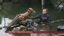 La Roche : Place Napoléon, les animaux chez le véto !