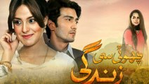 Choti Si Zindagi Episode 19 Full HD HUM TV Drama 14 February