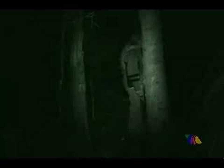 Infarto, Bosque del Terror
