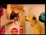 Humour Blondes - La Chatte