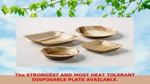 Happy Tiffin 95 Large Round Biodegradable Palm Leaf Plates Compostable Disposable 25 Pack 5532b277