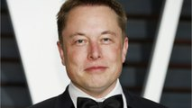 Elon Musk Says Humans and Machines Must Merge to Survive AI