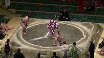 Un Sumo mis KO dès le début de son combat !
