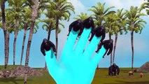 Dedo de la Colección de la Familia | Top 10 Dedos de la Familia 3D Colección de Superhéroes | Dedo de la familia Para