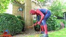 #Spiderman POOL SURPRISE! w/ Spiderman Pranks Frozen Elsa Swimming Pool! Funny Superhero V