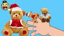 oso de peluche dedo de la familia | el oso de peluche de osito de peluche vuelta | rimas | niños canciones