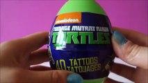 Teenage Mutant Ninja Turtles Surprise Eggs TMNT Turtles Teenage Mutant Ninja Turtles Toys 1