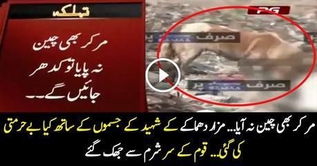 Exclusive Footage:- Dargah Par Jahbahaq Hone Wale Shahedon Ke Sath Kiya Kiya Gaya?