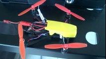 Eric avec kingkong Q100 FPV piloté avec quanum V52