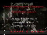 Indochine - Punker KARAOKE / INSTRUMENTAL