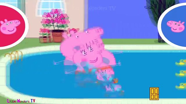 ☀ Peppa Pig Swimming Race ☀ Peppa pig swimming pool ☀ Peppa pig gameplay for kids ☀