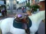 mélina et son poney