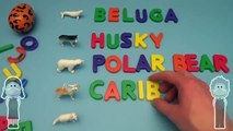 Kinder Surprise Egg Learn to Spell! Spelling Arctic Animals! With Surprise Eggs!