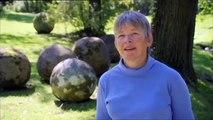 Gdy Kosmos zmienia historię - film dokumentalny (lektor pl)