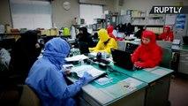 City Hall Workers Dress Up as Ninjas for Japan's National Ninja Day