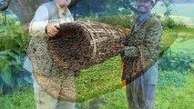 Những vũ khí côn trùng kinh dị từng được sử dụng trong chiến tranh