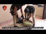 Kapen me 15 kg kanabis dhe 0.5 kg kokainë, arrestohen 2 persona në Shkodër