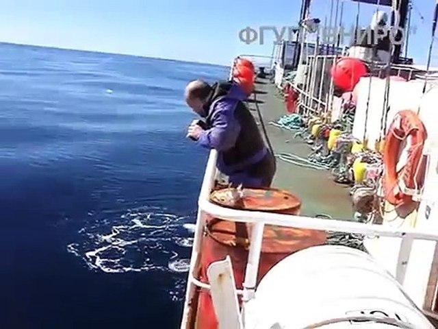Il filme l'océan, mais ce qui surgit des profondeurs de la mer risque de vous donner des frissons !