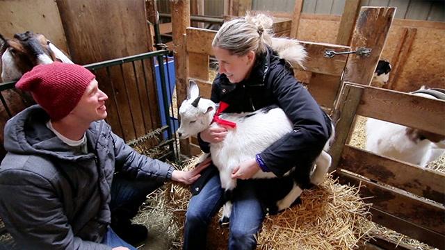 Goats Sure Are Romantic