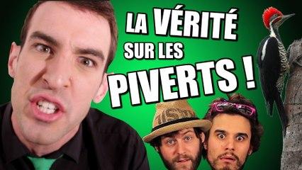 IDÉE REÇUE #18 : La vérité sur les Piverts !