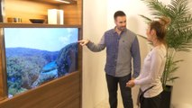 Panasonic presenta una pantalla de televisor invisible