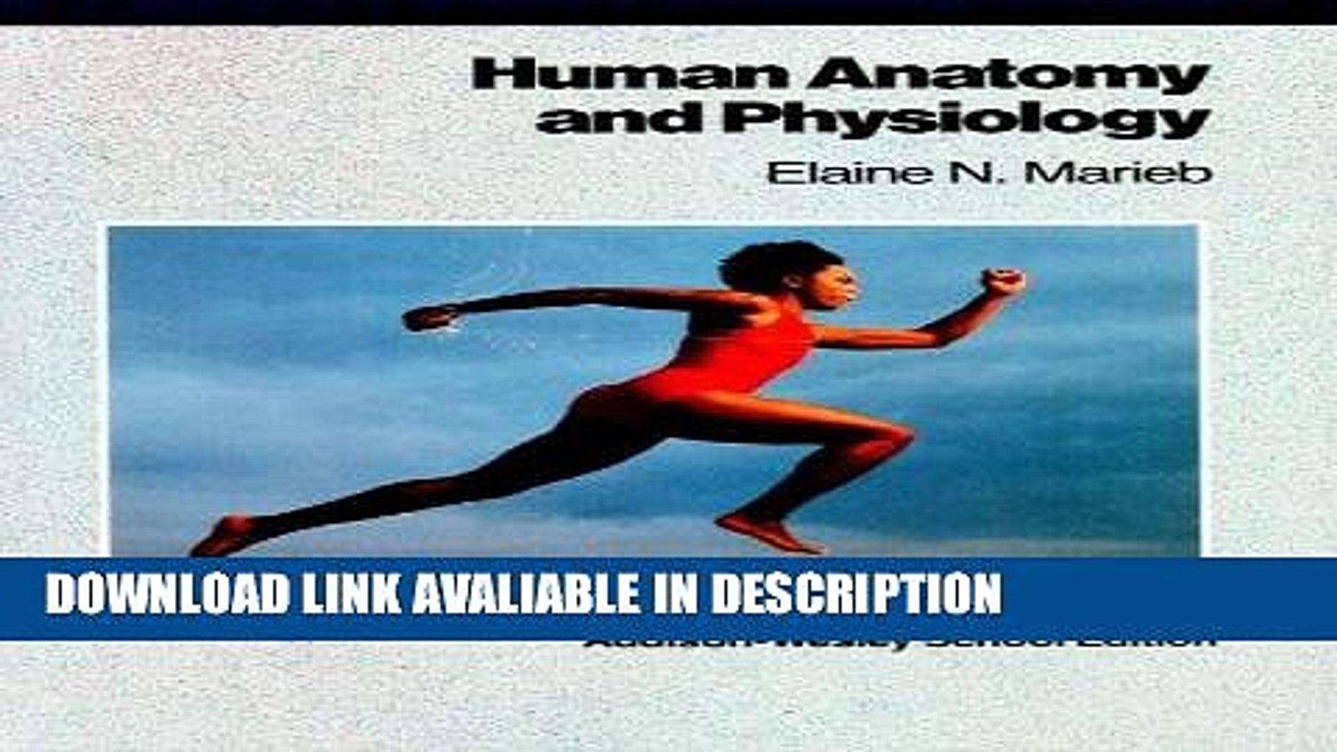 essentials of human anatomy and physiology 10th edition elaine marieb pdf free
