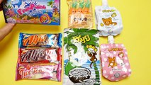 Fruit Paint SeaWorld, Carrots, Coconut Candy from Asia-WuGE4kR41jU